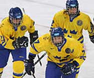 Swedenhockey